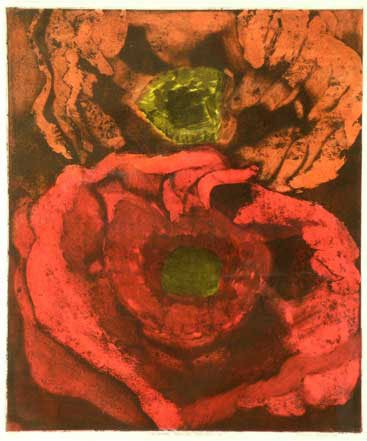 Penny Ormerod, Flower Study Series 6, 1994/245